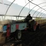 Épandage du compost