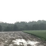 Champ labouré par les orages